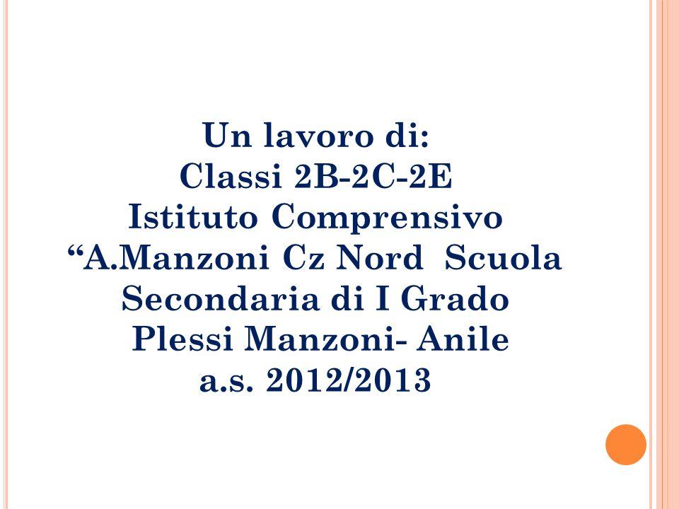 Un lavoro di: Classi 2B-2C-2E Istituto Comprensivo A.Manzoni Cz Nord Scuola Secondaria di I Grado Plessi Manzoni- Anile a.s. 2012/2013