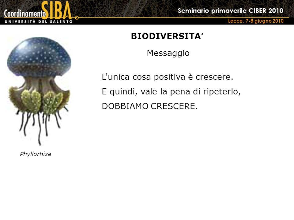 Seminario primaverile CIBER 2010 Lecce, 7-8 giugno 2010 Phyllorhiza L unica cosa positiva è crescere.