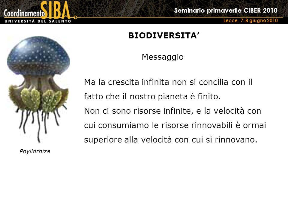 Seminario primaverile CIBER 2010 Lecce, 7-8 giugno 2010 Phyllorhiza Ma la crescita infinita non si concilia con il fatto che il nostro pianeta è finito.