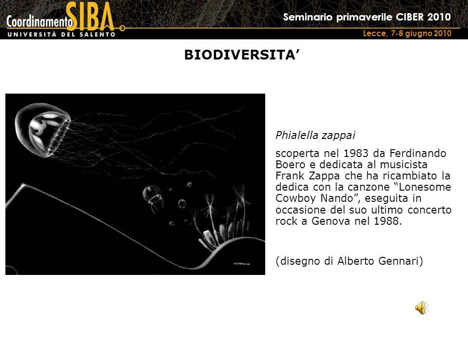 Seminario primaverile CIBER 2010 Lecce, 7-8 giugno 2010 BIODIVERSITA Phialella zappai scoperta nel 1983 da Ferdinando Boero e dedicata al musicista Frank Zappa che ha ricambiato la dedica con la canzone Lonesome Cowboy Nando, eseguita in occasione del suo ultimo concerto rock a Genova nel 1988.
