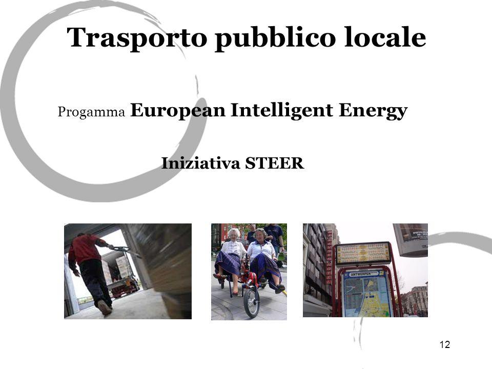 12 Trasporto pubblico locale Progamma European Intelligent Energy Iniziativa STEER