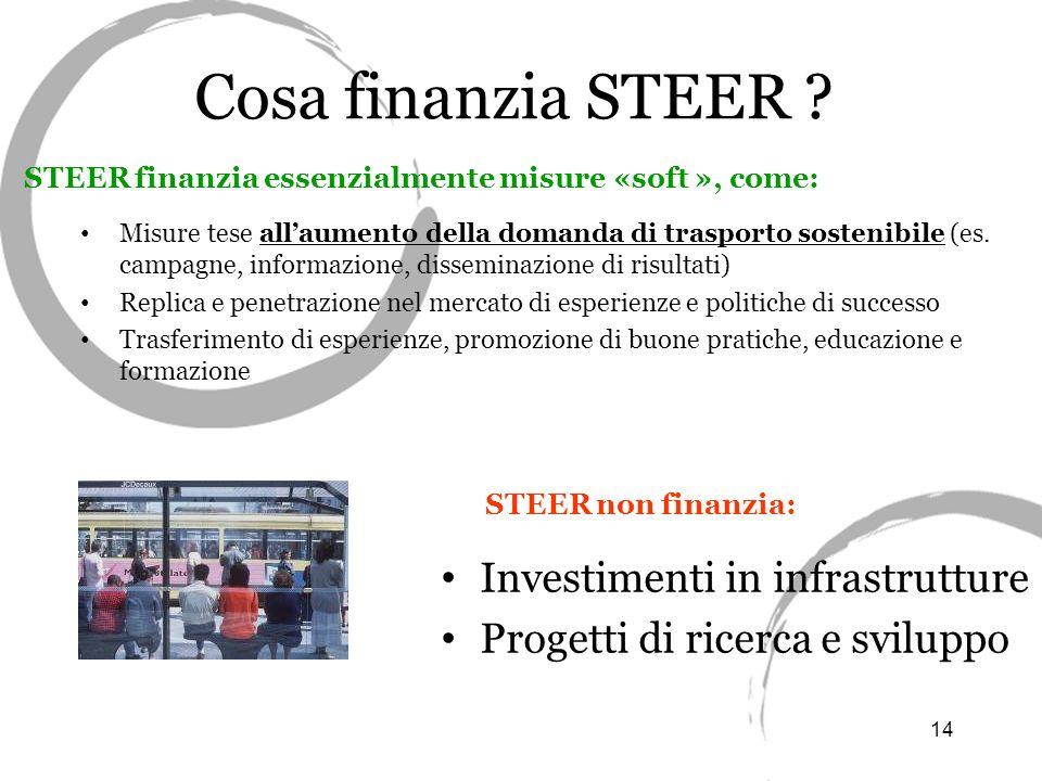 14 Cosa finanzia STEER .