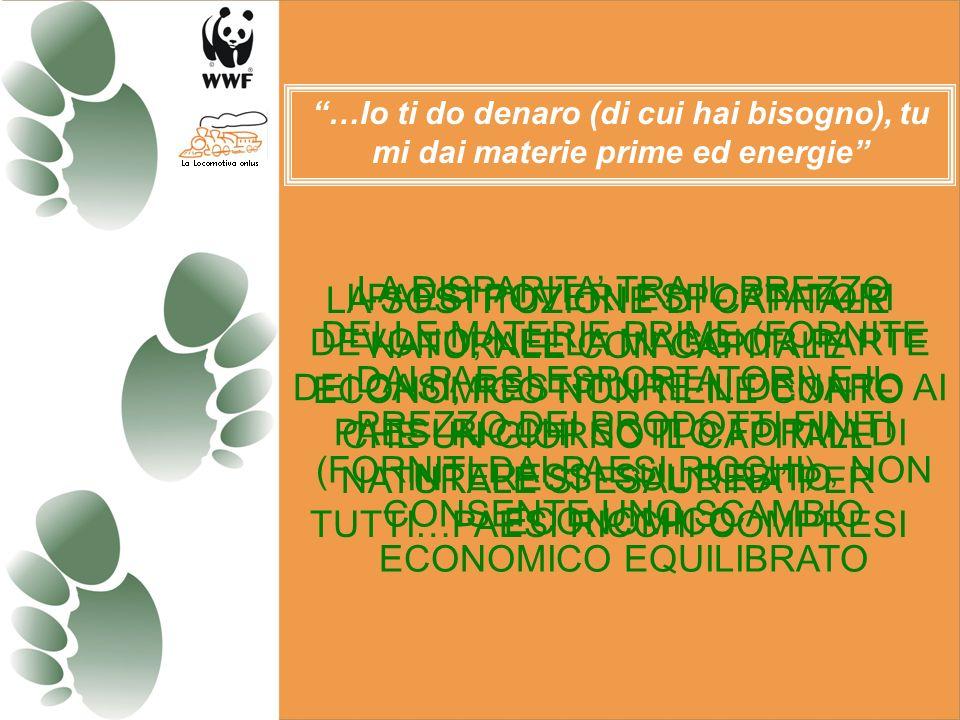 … l86% delle risorse globali viene utilizzato dal 20% più ricco della popolazione mondiale Rapporto Banca Mondiale
