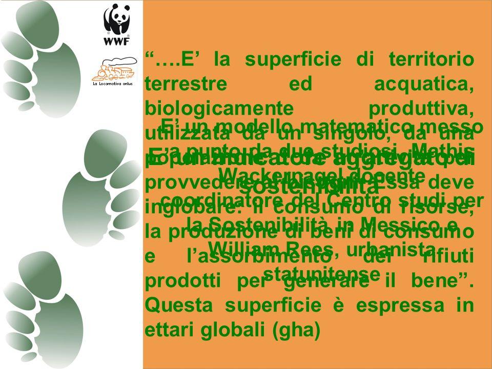 ….E la superficie di territorio terrestre ed acquatica, biologicamente produttiva, utilizzata da un singolo, da una popolazione o da unattività per provvedere ai bisogni.