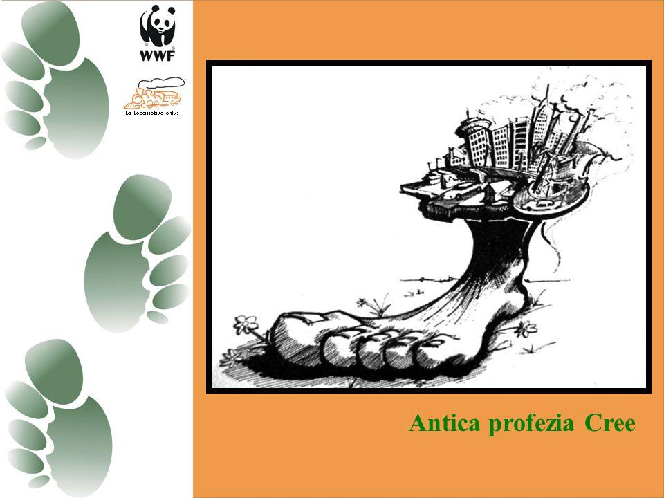 Gli ecosistemi non obbediscono alle regole che governano la proprietà privata. Le azioni compiute da un agricoltore – recintare la terra, interrompere