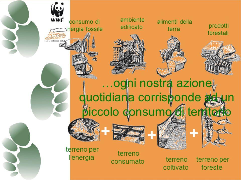 + + + terreno per lenergia consumo di energia fossile terreno consumato terreno coltivato terreno per foreste ambiente edificato alimenti della terra prodotti forestali …ogni nostra azione quotidiana corrisponde ad un piccolo consumo di territorio