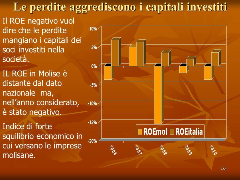 16 Le perdite aggrediscono i capitali investiti Il ROE negativo vuol dire che le perdite mangiano i capitali dei soci investiti nella società. IL ROE