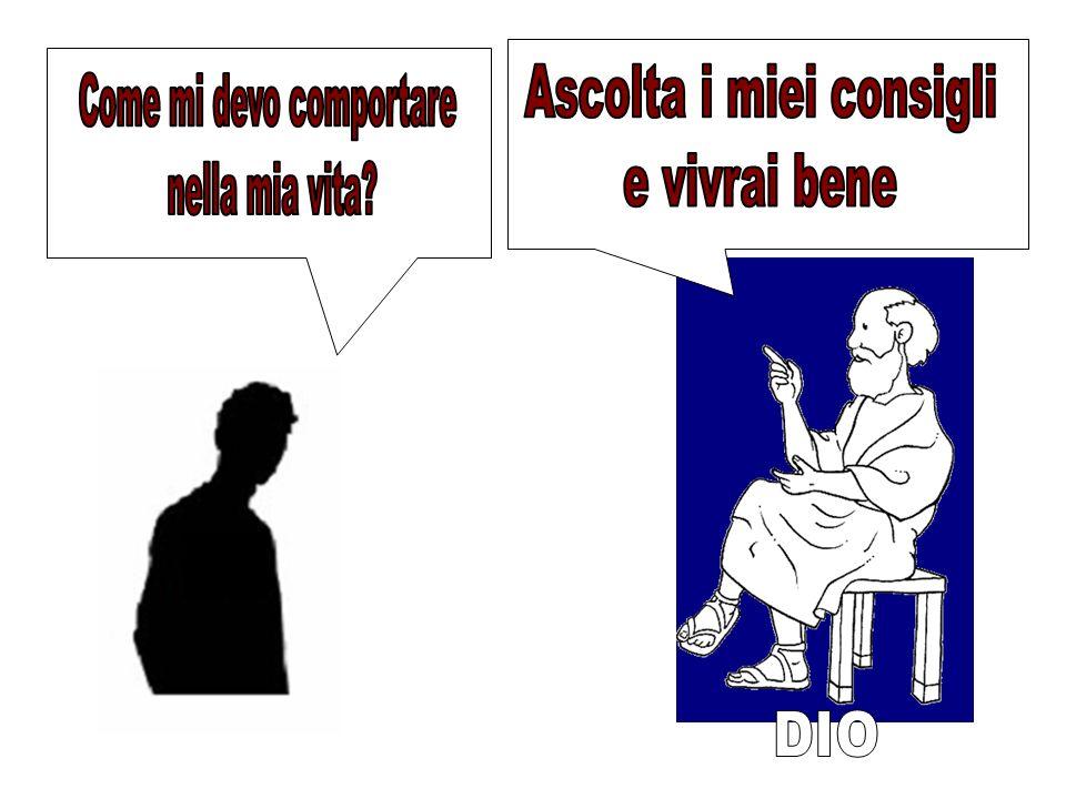 PORCO D.. Porco Disco