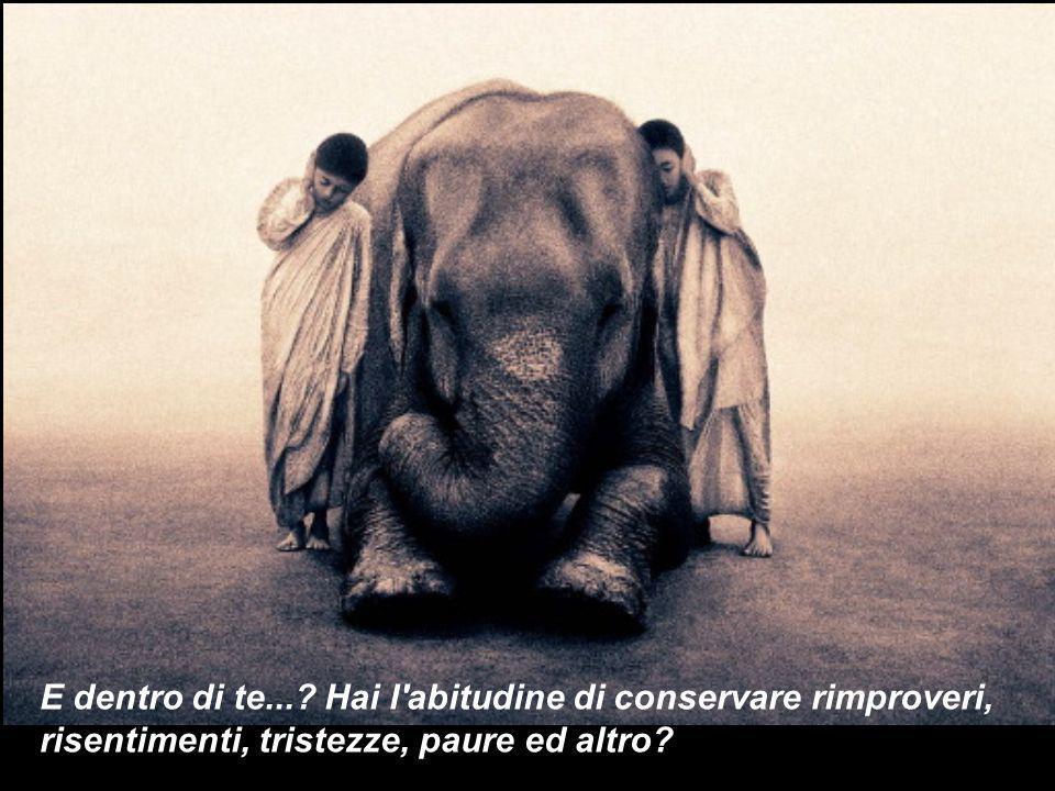 bensì il significato dell atteggiamento di conservare...