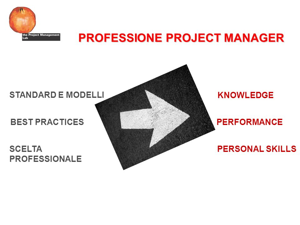 PROFESSIONE PROJECT MANAGER KNOWLEDGE PERFORMANCE PERSONAL SKILLS STANDARD E MODELLI BEST PRACTICES SCELTA PROFESSIONALE