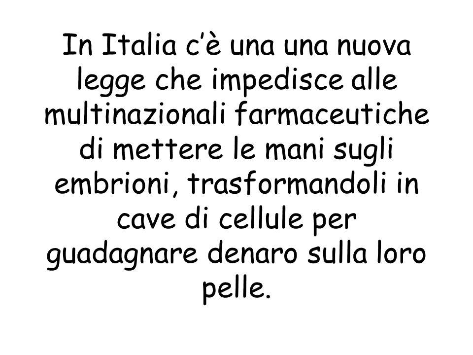In Italia cè una una nuova legge che impedisce alle multinazionali farmaceutiche di mettere le mani sugli embrioni, trasformandoli in cave di cellule per guadagnare denaro sulla loro pelle.