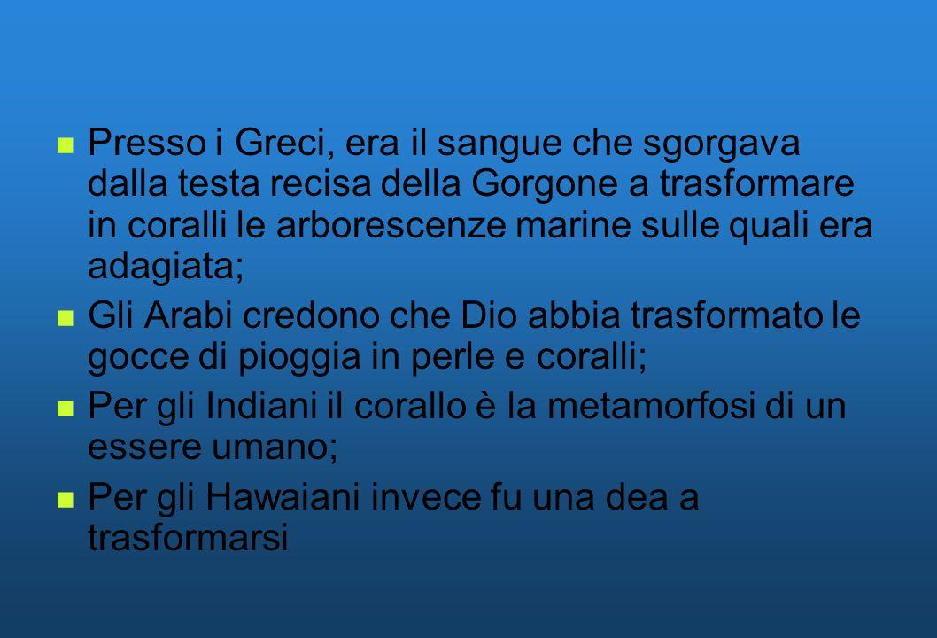 Presso i Greci, era il sangue che sgorgava dalla testa recisa della Gorgone a trasformare in coralli le arborescenze marine sulle quali era adagiata;