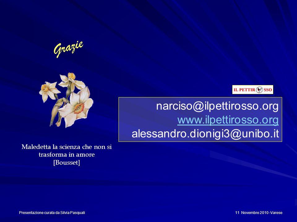 narciso@ilpettirosso.org www.ilpettirosso.org alessandro.dionigi3@unibo.it Grazie Maledetta la scienza che non si trasforma in amore [Bousset] Present