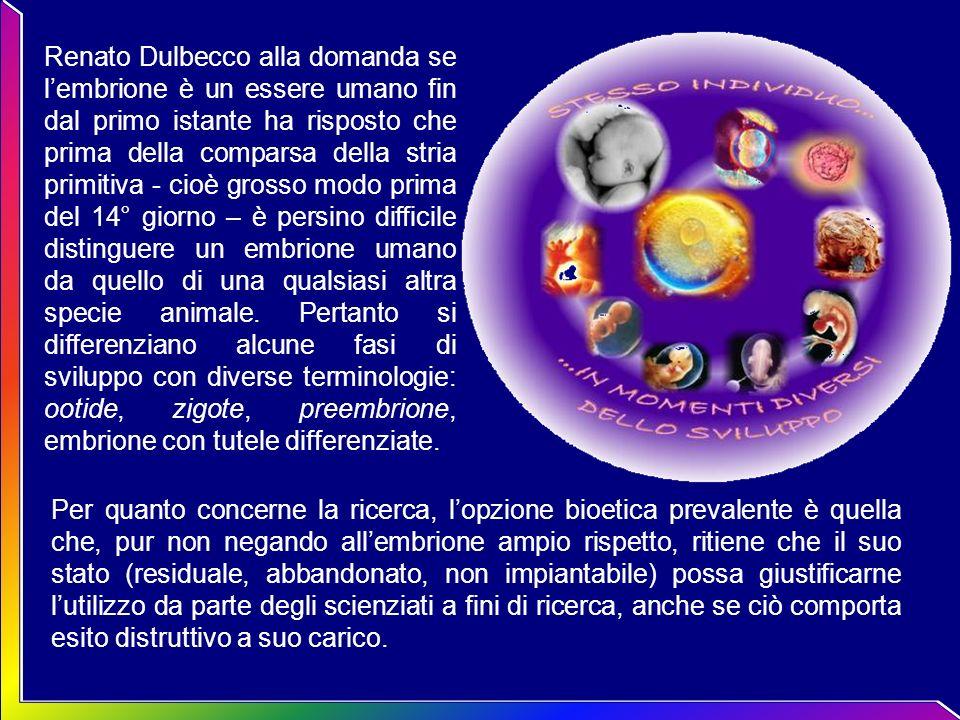 Renato Dulbecco alla domanda se lembrione è un essere umano fin dal primo istante ha risposto che prima della comparsa della stria primitiva - cioè gr
