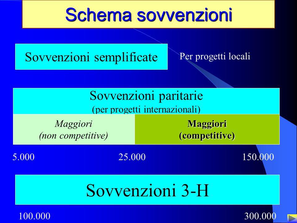23 Schema sovvenzioni Sovvenzioni semplificate Per progetti locali Sovvenzioni paritarie (per progetti internazionali) Maggiori (non competitive)Maggi
