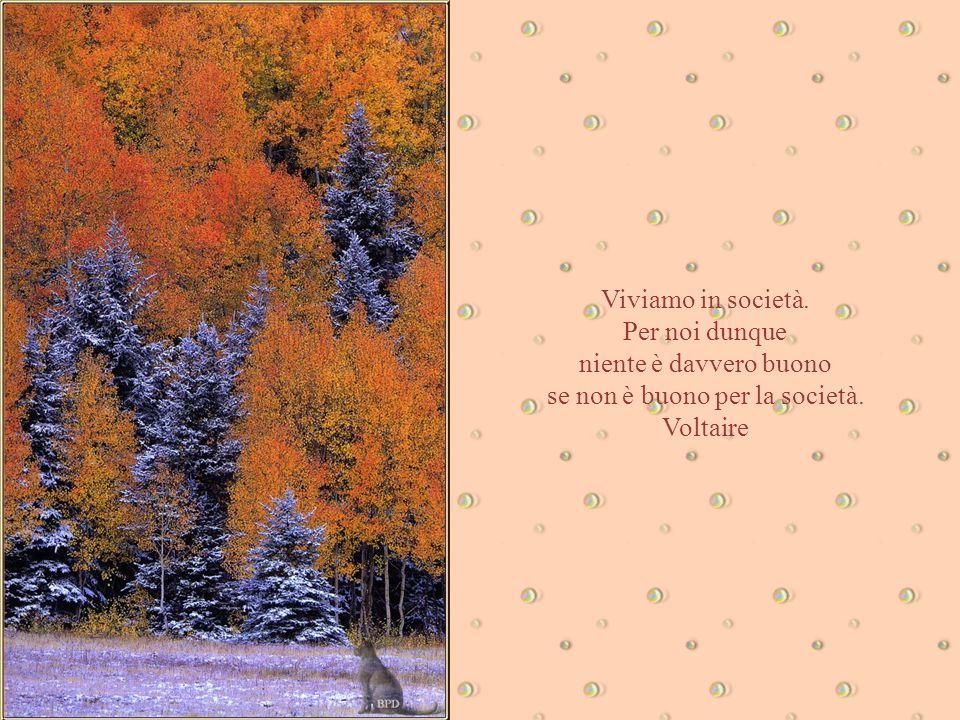 Aforismi & Natura L'uomo ha bisogno di benevolenza. E' il nutrimento della nostra povera anima. Franz Werfel
