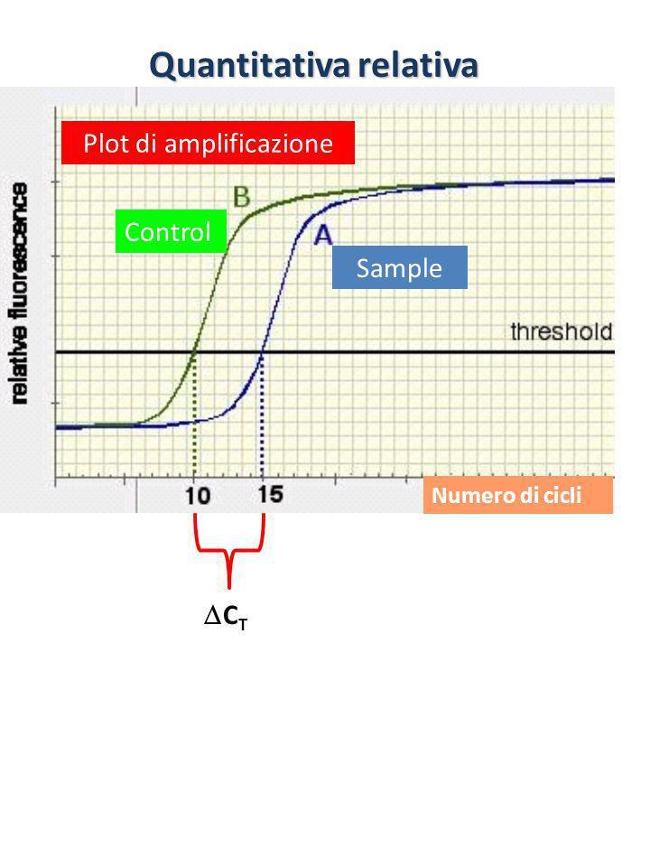 Quantitativa relativa Plot di amplificazione Numero di cicli C T Sample Control