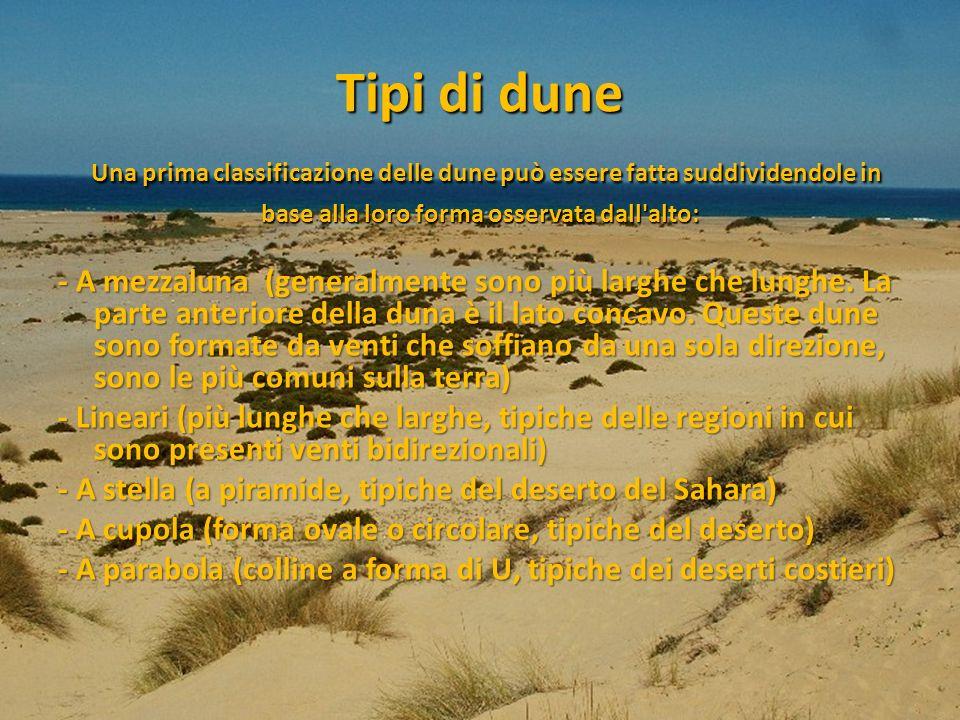 Tipi di dune Una prima classificazione delle dune può essere fatta suddividendole in base alla loro forma osservata dall'alto: - A mezzaluna (generalm
