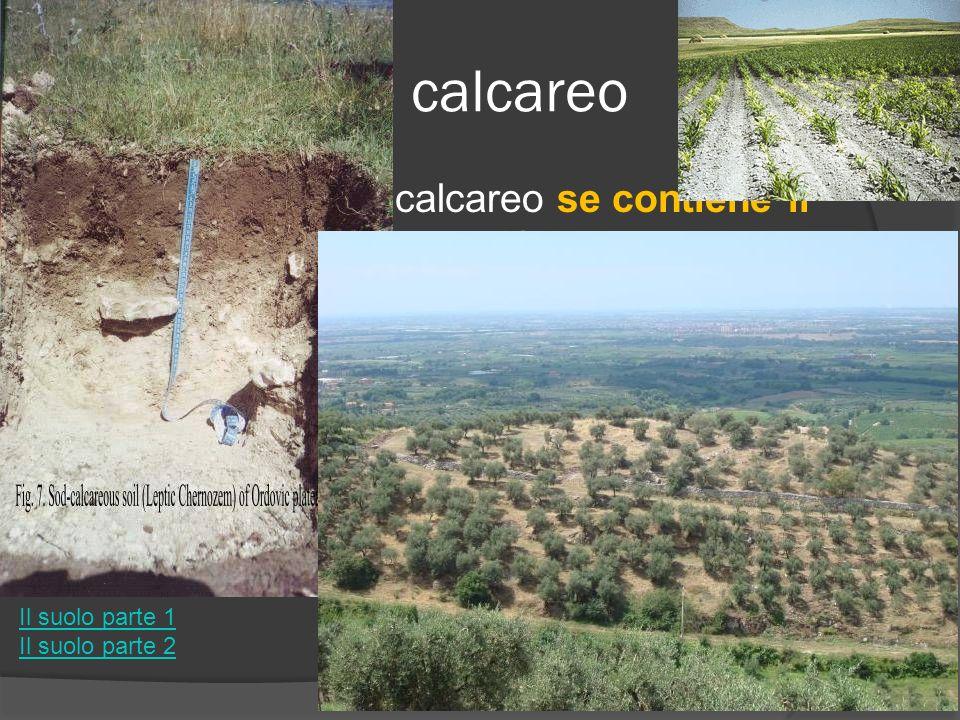Suolo calcareo Un suolo si dice calcareo se contiene il una percentuale > 20% di calcare tende a creare superficialmente una crosta che impedisce alla