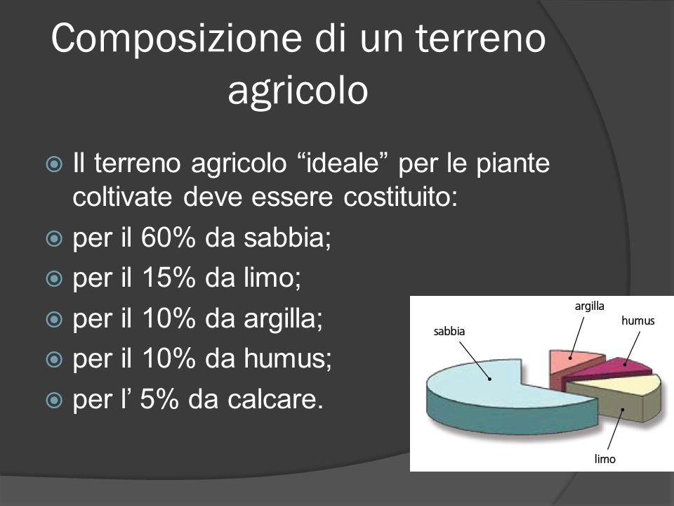 Composizione di un terreno agricolo Il terreno agricolo ideale per le piante coltivate deve essere costituito: per il 60% da sabbia; per il 15% da limo; per il 10% da argilla; per il 10% da humus; per l 5% da calcare.