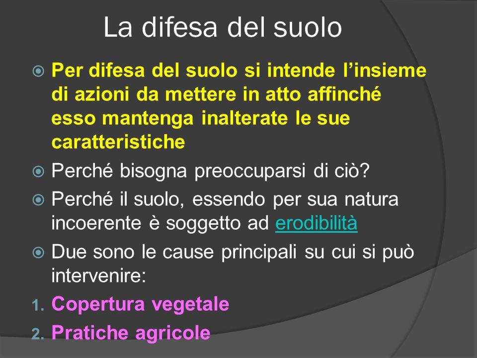 La difesa del suolo Per difesa del suolo si intende linsieme di azioni da mettere in atto affinché esso mantenga inalterate le sue caratteristiche Per