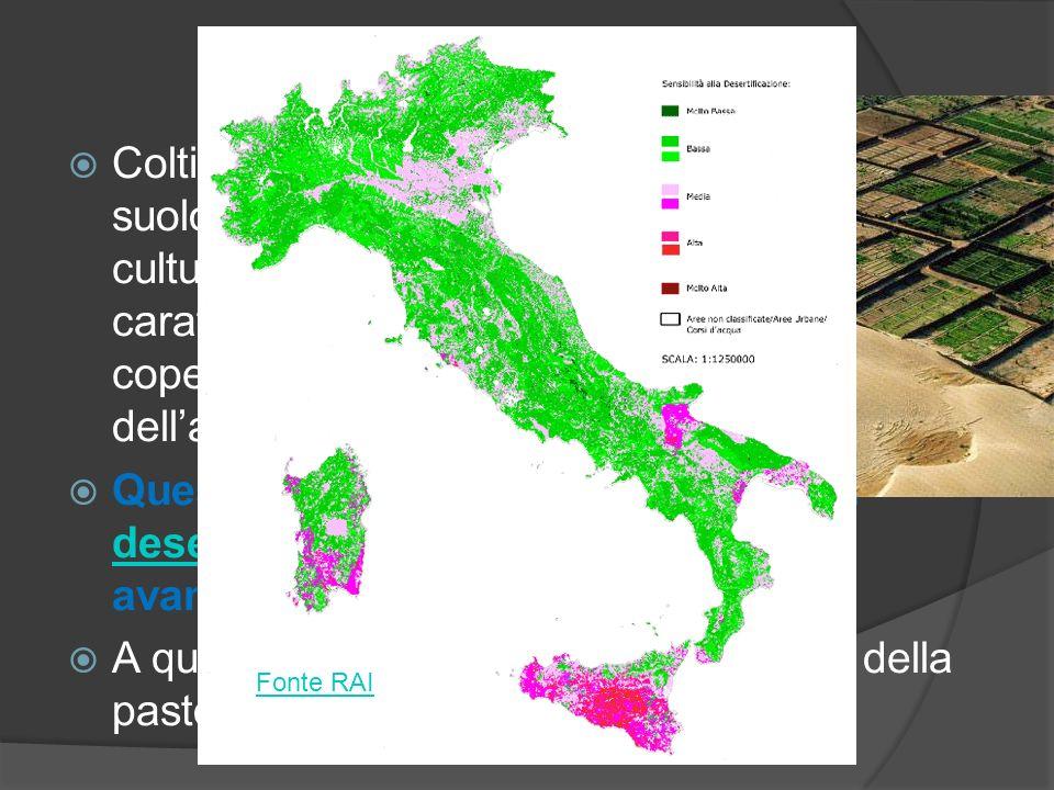 La monocoltura Coltivare per anni la stessa specie su un suolo senza effettuare la rotazione delle culture può portare può alterare le caratteristiche