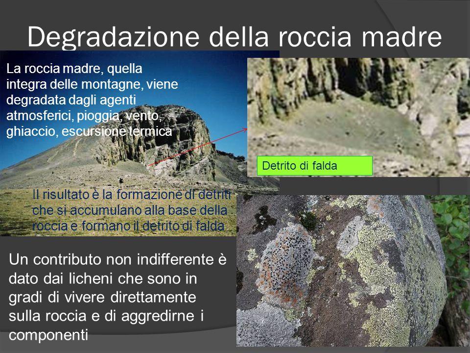 Degradazione della roccia madre La roccia madre, quella integra delle montagne, viene degradata dagli agenti atmosferici, pioggia, vento, ghiaccio, escursione termica Il risultato è la formazione di detriti che si accumulano alla base della roccia e formano il detrito di falda Detrito di falda Un contributo non indifferente è dato dai licheni che sono in gradi di vivere direttamente sulla roccia e di aggredirne i componenti