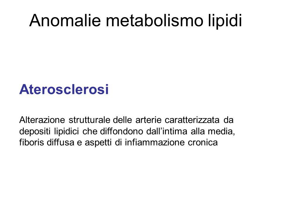 Anomalie metabolismo lipidi Aterosclerosi Alterazione strutturale delle arterie caratterizzata da depositi lipidici che diffondono dallintima alla media, fiboris diffusa e aspetti di infiammazione cronica