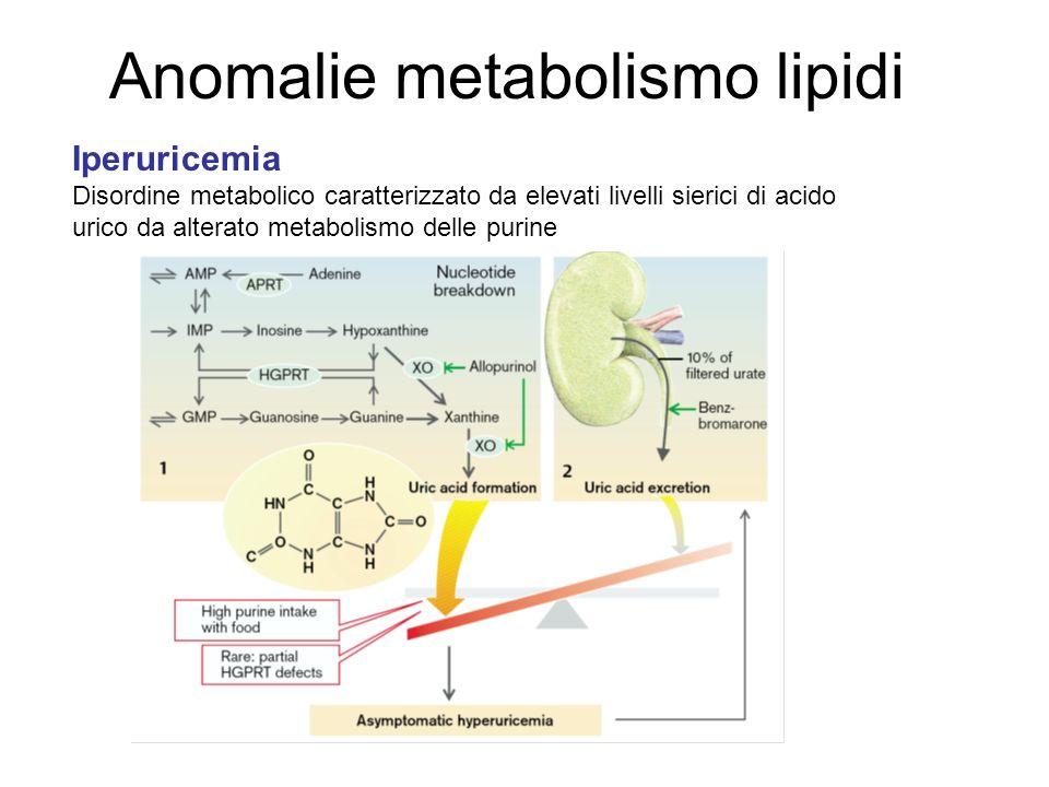 Anomalie metabolismo lipidi Iperuricemia Disordine metabolico caratterizzato da elevati livelli sierici di acido urico da alterato metabolismo delle purine