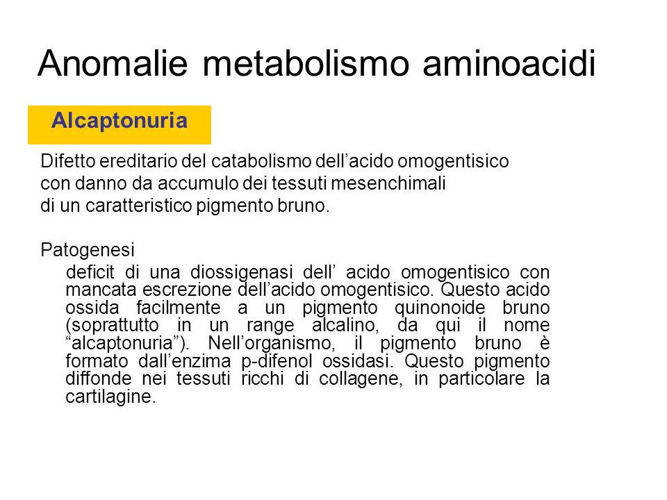 Anomalie metabolismo aminoacidi Difetto ereditario del catabolismo dellacido omogentisico con danno da accumulo dei tessuti mesenchimali di un caratteristico pigmento bruno.