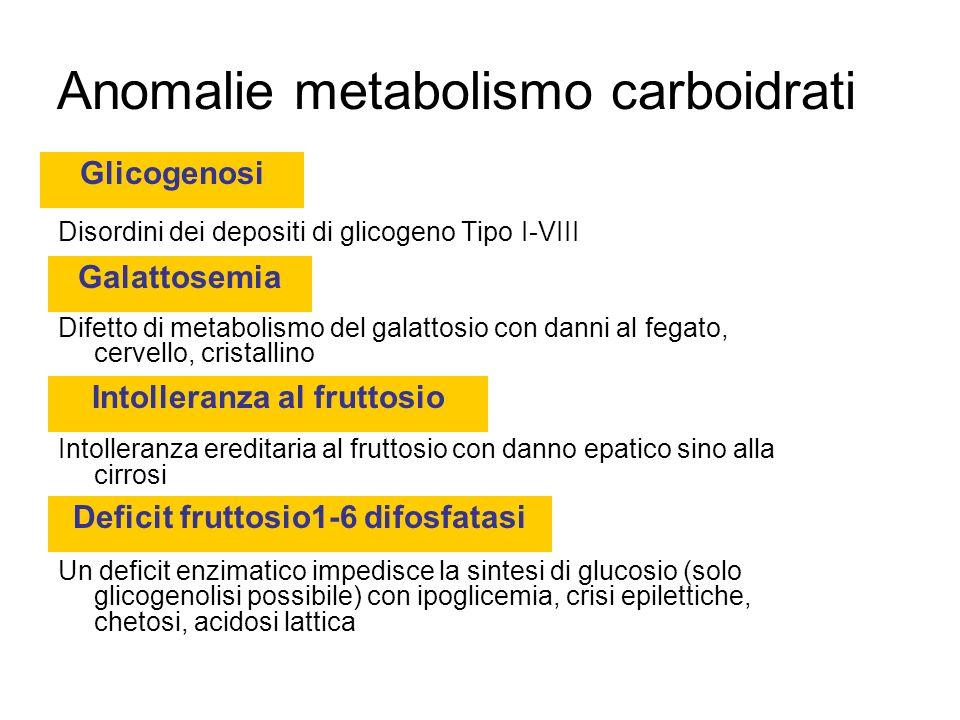 Anomalie metabolismo carboidrati Disordini dei depositi di glicogeno Tipo I-VIII Difetto di metabolismo del galattosio con danni al fegato, cervello, cristallino Intolleranza ereditaria al fruttosio con danno epatico sino alla cirrosi Un deficit enzimatico impedisce la sintesi di glucosio (solo glicogenolisi possibile) con ipoglicemia, crisi epilettiche, chetosi, acidosi lattica Glicogenosi Galattosemia Intolleranza al fruttosio Deficit fruttosio1-6 difosfatasi