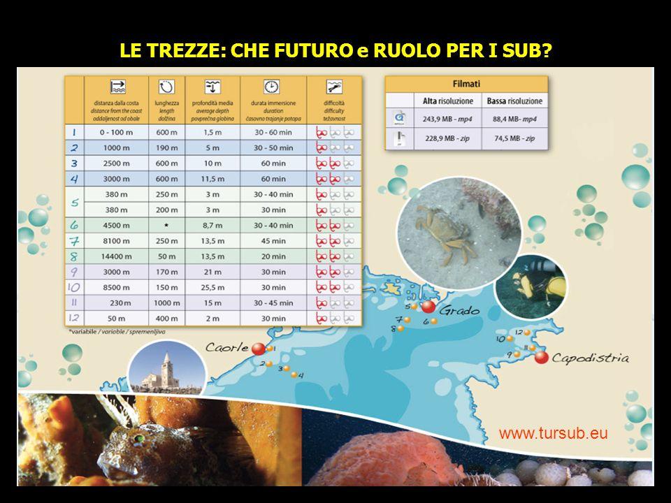 www.tursub.eu