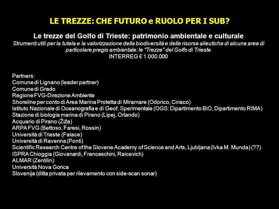 LE TREZZE: CHE FUTURO e RUOLO PER I SUB? Le trezze del Golfo di Trieste: patrimonio ambientale e culturale Strumenti utili per la tutela e la valorizz