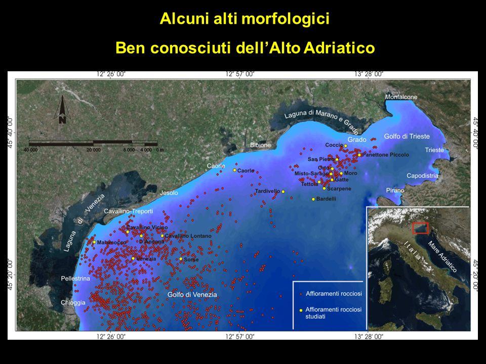 Alcuni alti morfologici Ben conosciuti dellAlto Adriatico