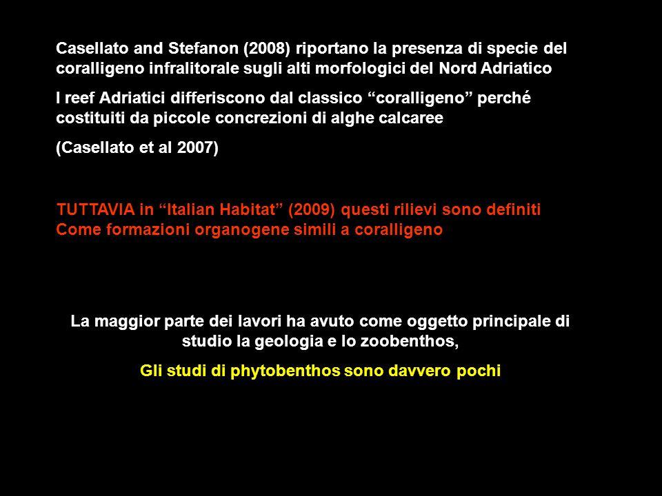 Casellato and Stefanon (2008) riportano la presenza di specie del coralligeno infralitorale sugli alti morfologici del Nord Adriatico I reef Adriatici
