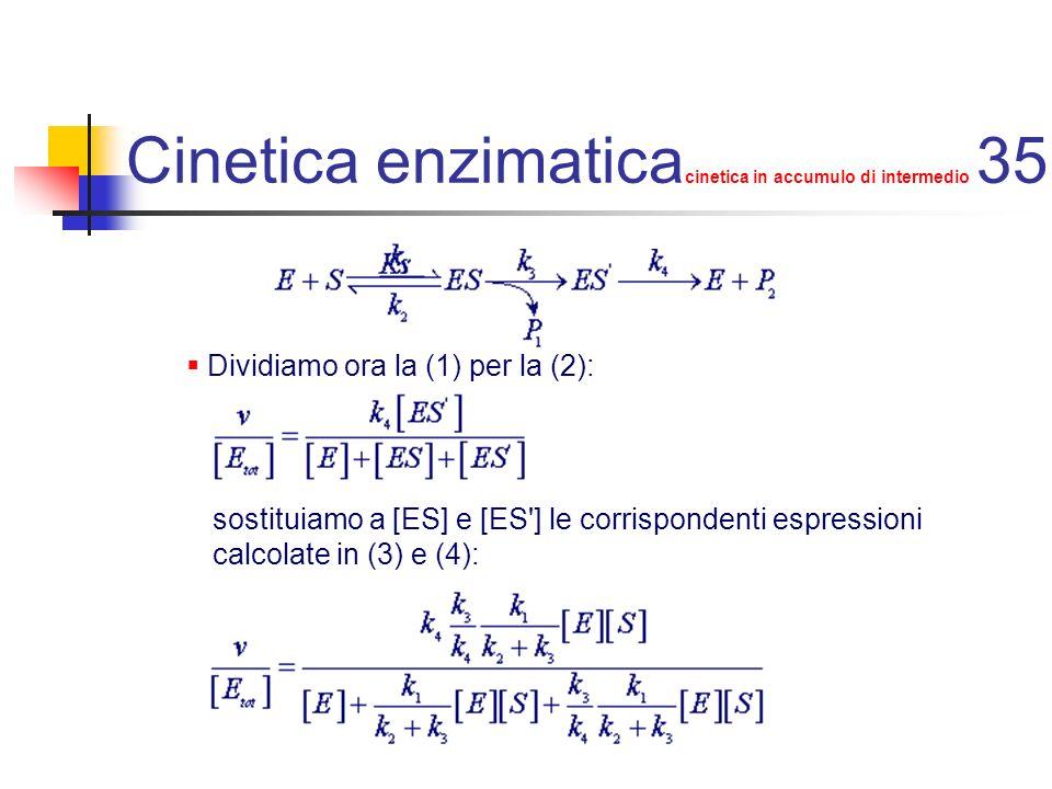 Cinetica enzimatica cinetica in accumulo di intermedio 35 Dividiamo ora la (1) per la (2): sostituiamo a [ES] e [ES'] le corrispondenti espressioni ca
