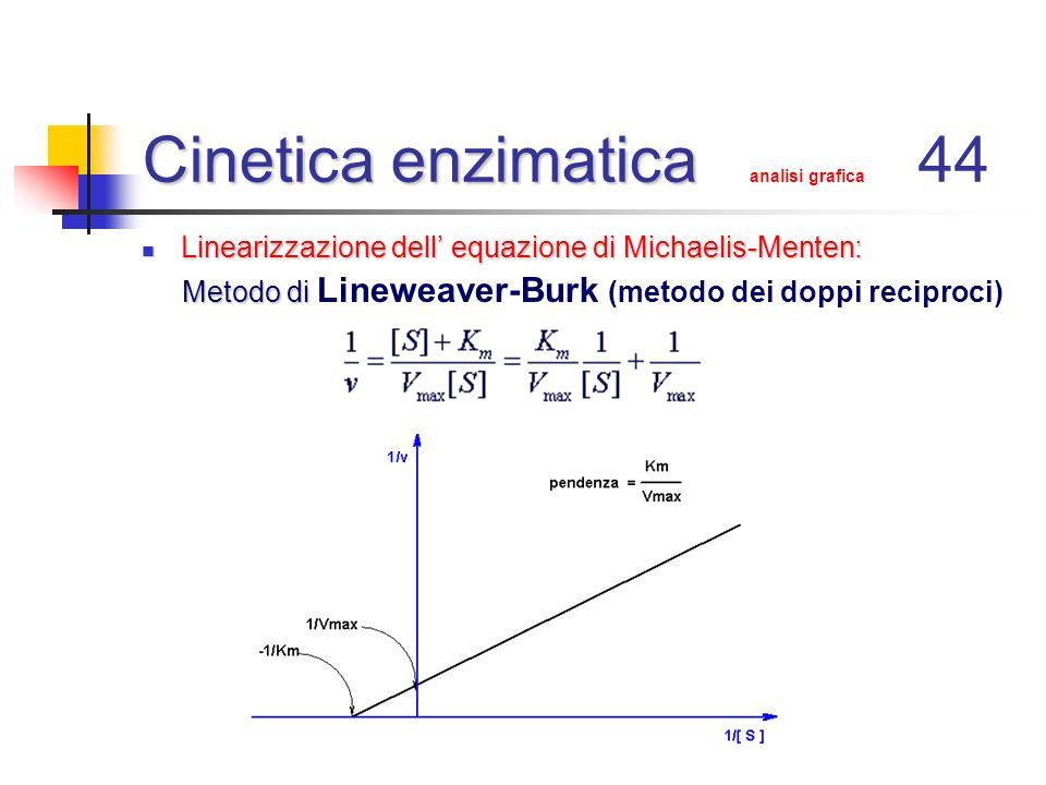 Cinetica enzimatica Cinetica enzimatica analisi grafica 44 Linearizzazione dell equazione di Michaelis-Menten: Linearizzazione dell equazione di Micha