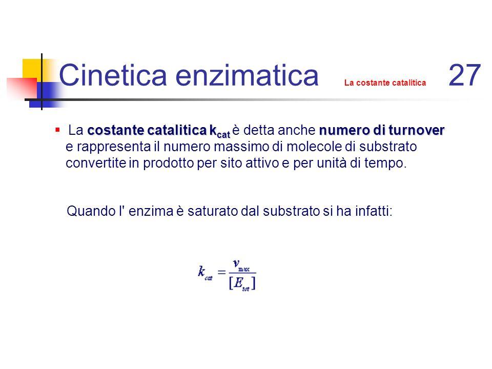Cinetica enzimatica cinetica in accumulo di intermedio 38 Si noti che se k 4 >> k 3 l intermedio ES non si accumulerebbe più e l equazione di velocità sarebbe quella di un enzima ad un substrato che segue una cinetica di stato stazionario con e