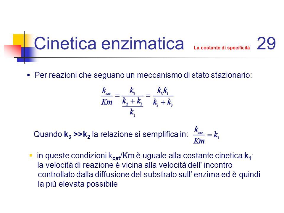 Cinetica enzimatica k cat e k cat /Km 40 Considerazioni su k cat e k cat /K m Immaginiamo di modificare un enzima sostituendo un residuo aminoacidico del sito attivo e di valutarne le conseguenze sulla catalisi in primo luogo in condizioni di saturazione di substrato quando