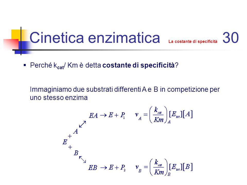 Cinetica enzimatica La costante di specificità 31 A / B è Quando [A]=[B] il rapporto v A / v B è uguale al rapporto dei rispettivi valori di k cat /Km: specificità l enzima ha infatti maggior specificità per il substrato per il quale ha il valore più elevato di k cat /Km.