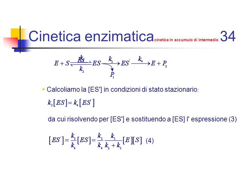 Cinetica enzimatica cinetica in accumulo di intermedio 35 Dividiamo ora la (1) per la (2): sostituiamo a [ES] e [ES ] le corrispondenti espressioni calcolate in (3) e (4):