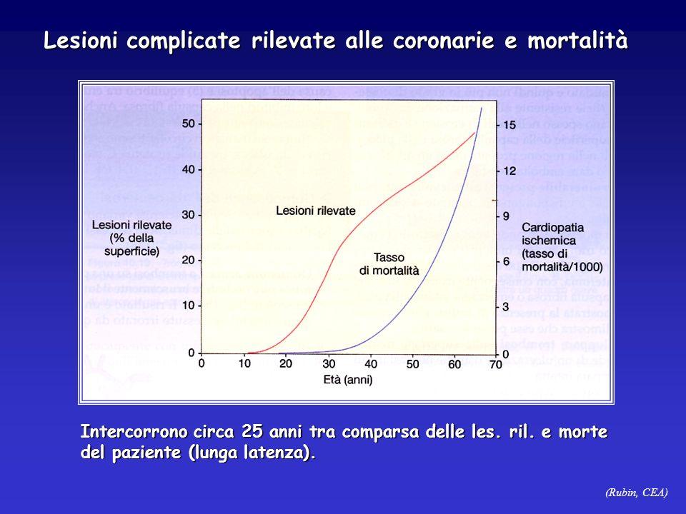 (Rubin, CEA) Lesioni complicate rilevate alle coronarie e mortalità Intercorrono circa 25 anni tra comparsa delle les. ril. e morte del paziente (lung