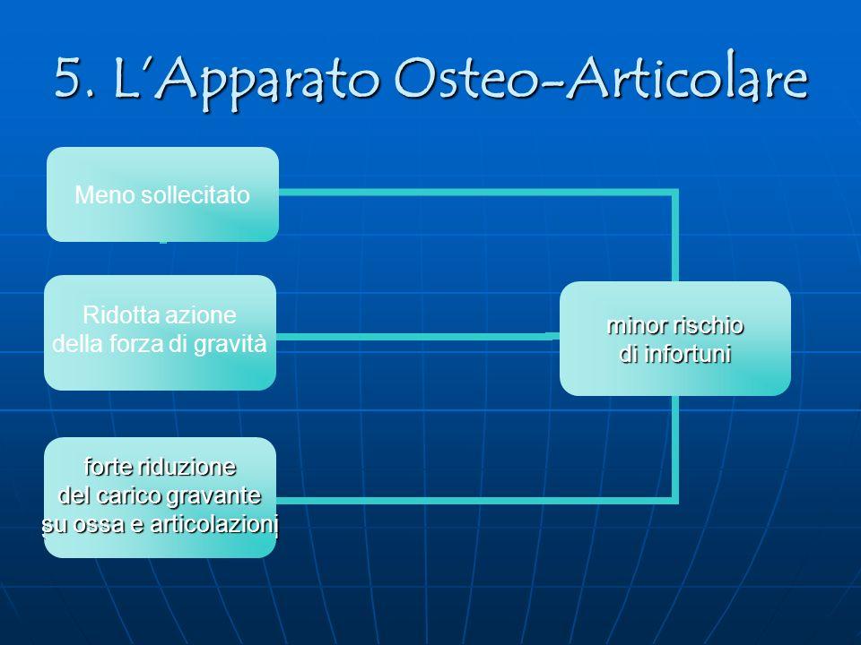 5. LApparato Osteo-Articolare Ridotta azione della forza di gravità forte riduzione del carico gravante su ossa e articolazioni