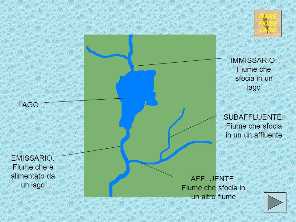 Tipi di foce A ESTUARIO: A forma di imbuto, tipica dove ci sono forti correnti e maree A DELTA: Divisa in vari BRACCI o RAMI, con abbondante accumulo