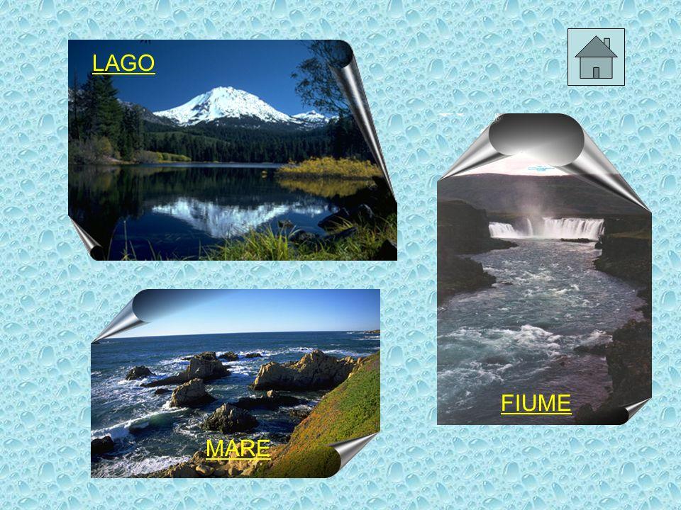 Il ciclo dellacqua Tutta lacqua presente sulla terra circola senza interruzione attraverso i processi di evaporazione e precipitazione.
