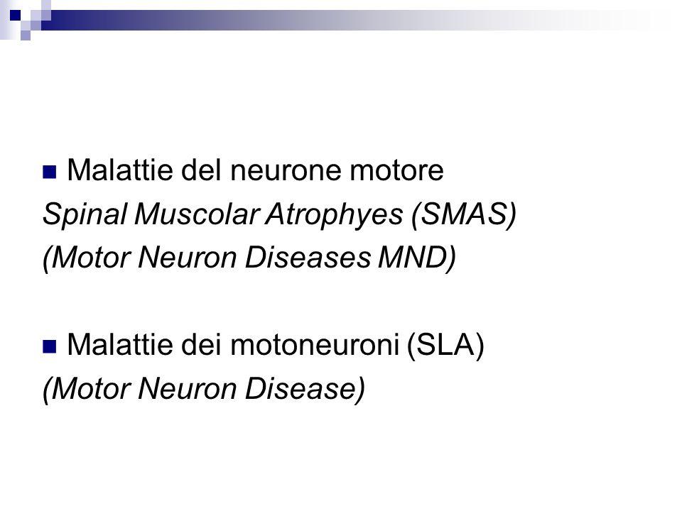 Criteri diagnostici El Escorial 1998 (WFN) Evidenza di: Interessamento del motoneurone inferiore (LMN) (clinica, elettrofisiologica, patologica) Interessamento del motoneurone superiore (UMN) (clinica) I segni di interessamento motoneuronale deve essere cercato in almeno 4 livelli (tronco-encefalo, cervicale, toracica e lombosacrale) Assenza di Immagini in grado di spiegare i segni clinici ed elettrofisiologici