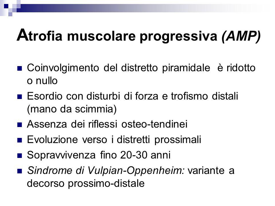 A trofia muscolare progressiva (AMP) Coinvolgimento del distretto piramidale è ridotto o nullo Esordio con disturbi di forza e trofismo distali (mano