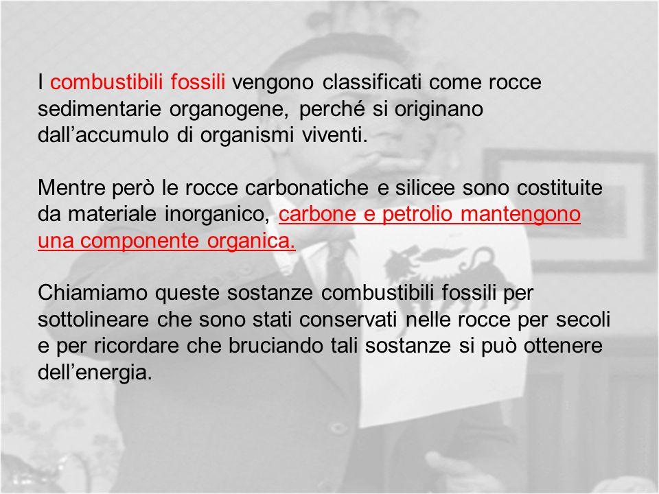 I combustibili fossili vengono classificati come rocce sedimentarie organogene, perché si originano dallaccumulo di organismi viventi.