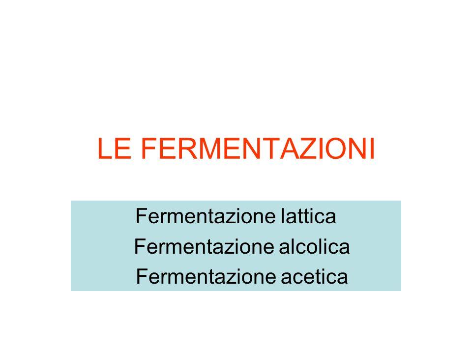 LE FERMENTAZIONI Fermentazione lattica Fermentazione alcolica Fermentazione acetica