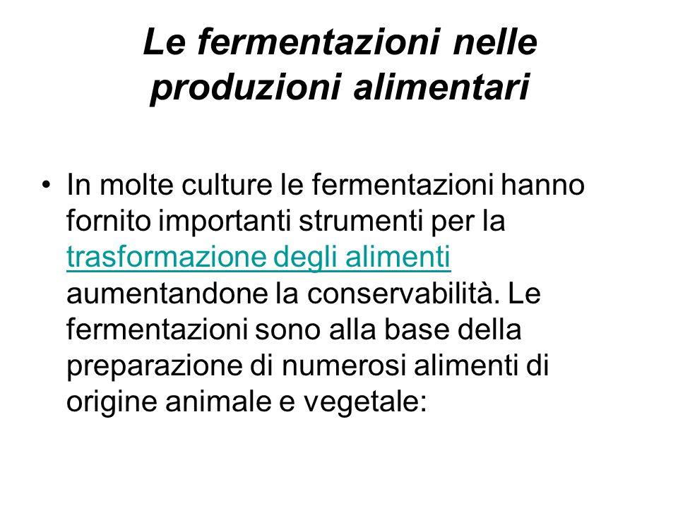 Le fermentazioni nelle produzioni alimentari In molte culture le fermentazioni hanno fornito importanti strumenti per la trasformazione degli alimenti